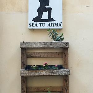Nel cuore dell'Italia a caccia di emozioni