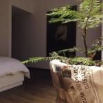 un po' di bosco in una stanza